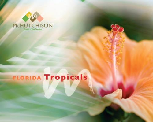 Tropical Catalog